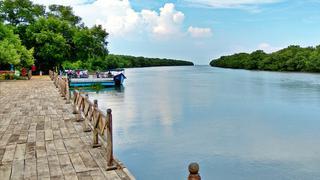 Cornga-Koringa bay and boating