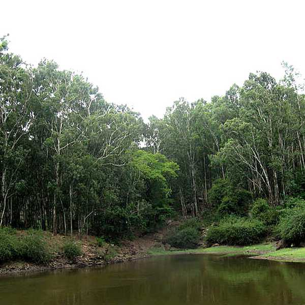 Gangotri Lake